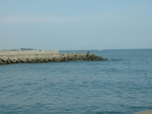 三重県白子港河口 FISH&MAPS