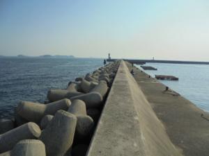 愛知県師崎漁港赤堤 釣り場サイトFISH&MAPS