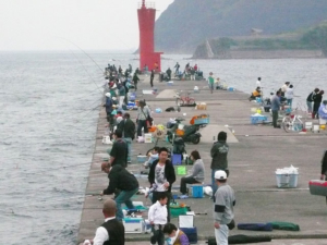 和歌山県加太港大波止先端 FISH&MAPS
