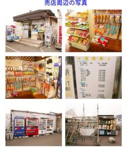 和歌山県マリーナシティ写真05