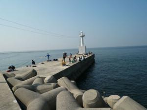 愛知県の釣り場榎戸漁港01