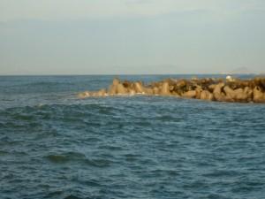 愛知県赤羽根漁港西側テトラ FISH&MAPS