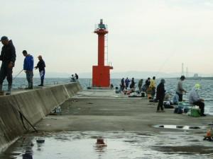 愛知県赤羽根赤灯台先端 FISH&MAPS