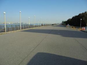 愛知県碧南緑地西側道路 FISH&MAPS