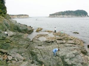 和歌山県水軒一文字地磯 FISH&MAPS